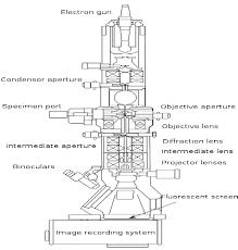 Tem Microscope 16 Schematic Diagram Of Tem Transmission Electron Microscopy