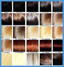 Sally Hair Color Chart Sally Beauty Supply Hair Color Chart 369711 Luxury Sally