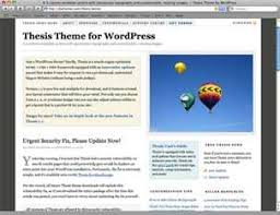 Thesis WordPress Theme by DIYThemes   WPHub Thesis