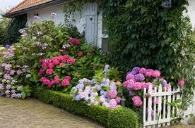 English Cottage Garden Stock Images RoyaltyFree Images U0026 Vectors Romantic Cottage Gardens