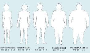 Obesity A Disease The Rebel Report