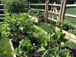 Kitchen Gardens Earlskitchengardenscom