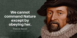 Francis Bacon Quotes