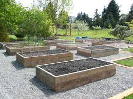 above ground vegetable garden. Above Ground Garden Bed Beautiful Neat Raised Designs Various . Vegetable