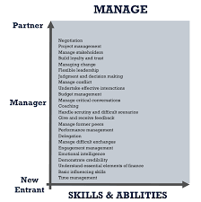 consulting excellence the implications for professional development manage core skills and abilities