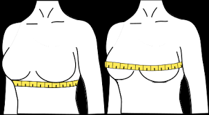 Bra Size Calculator How To Measure Bra Size Omni