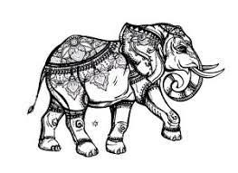 Foxy Elephant Coloring Page Flawestclub