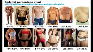 How To Find Out Fat Percentage How To Find Out Body Fat Percentage Youtube