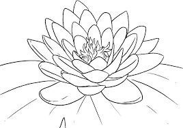 Small Picture Lotus Coloring Pages Simple Flower Coloring Pages Printable