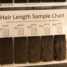 Hair Length Sample Chart Shave Blade Sample Chart For Grooming