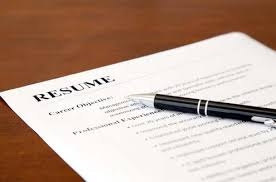 What Should I Write My College About Professional resume writing     AVON RESUMES Resume Example Executive Or Ceo Careerperfectcom Executive Resume  Professional Resume Writers Cost How Much Does