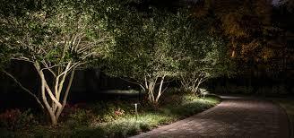 landscape lighting trees. Delighful Trees Pathway Light Landscape Lighting Inside Landscape Lighting Trees T