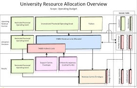Resource Allocation Diagram Apply Any Final Desired