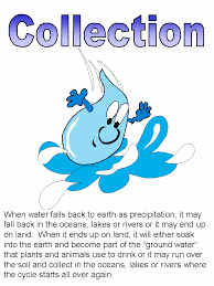 water cycle activity sheets water cycle activity page