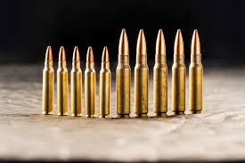 223 Vs 308 A Rifle Caliber Comparison The Lodge At