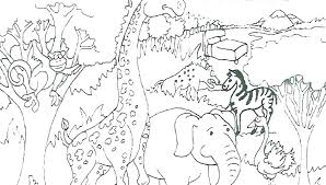 Wild Animal Coloring Pages Antiatominfo