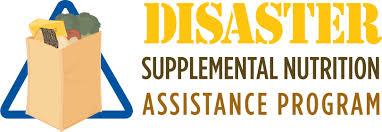 Disaster Supplemental Nutrition Assistance Program Dsnap