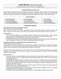 Information Systems Cover Letter Tomyumtumweb Com