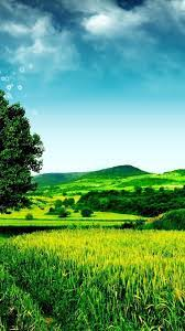 Wallpaper Android Nature Green - 2021 ...