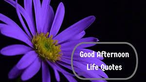 Good Afternoon Telugu Life Quotes Telugu Whatsapp Status