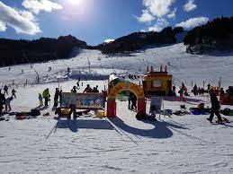 ちく さ 高原 スキー 場 天気