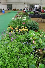 home and garden expo