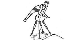 Прыжки через козла или коня техника выполнения Гимнастический прыжок