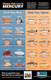 High Mercury Fish Chart Department Of The Blank Of Blank