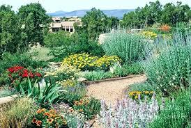 drought resistant garden. Drought Tolerant Garden Design Resistant Plans And Images .