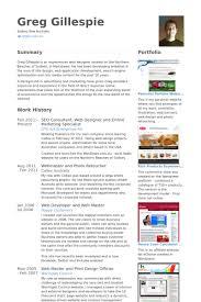 seo consultant web designer and online marketing specialist resume samples online marketing resume sample