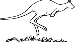 Small Picture Kangaroo Rat Coloring Page Coloring Coloring Coloring Pages
