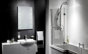 Bathroom Mirror Storage Bathroom Mirrors With Storage Dekoratornia Mirror Cabinet Simple