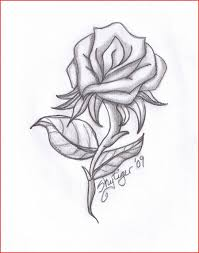 Pencil Sketch Drawing 614 Colorful Pencil Sketch Flowers