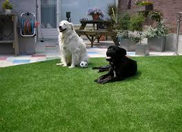 image of artificial grass carpet rug home depot