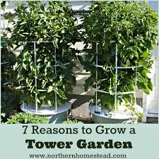 7 reasons to grow an aeroponic tower garden