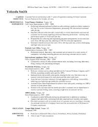 Payroll Accountant Resume Download Traffic Customer Resume Examples