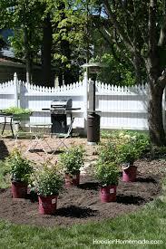 how to design a garden. HOW TO DESIGN A SMALL ROSE GARDEN - Learn How To Design And Plant Your Own Garden L