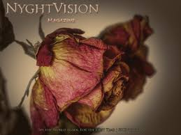 NyghtVision Volume 10 #2 - Spring Edition 2020 - Fine Art