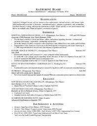 Resume Summary Examples Functional Resume Summary Example Resume