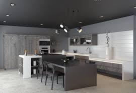 Kitchen And Designs 40 Beautiful Black White Kitchen Designs