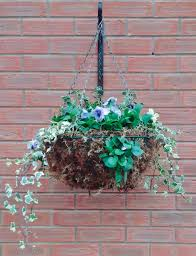 Small Picture Winter Hanging Baskets Garden Ideas Landscape Gardening