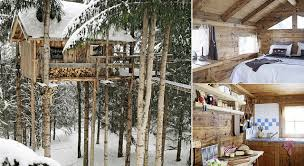 Tree house ideas inside House Designs Treehousehomedesign Living Locurto Livable Treehouses Home Design Garden Architecture Blog Magazine