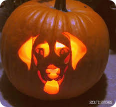 pumpkin carving stencils dog. all the joy: tuesday 10- 10 things to do before thanksgiving- and . joy thanksgiving pumpkin carving stencils dog