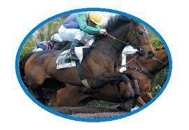 """Résultat de recherche d'images pour """"gifs de chevaux de course"""""""