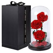 preserved flowers unwithered 3pcs eternal roses in a glass dome desk decoration malaysia