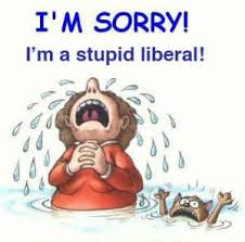 Image result for liberal stupidity