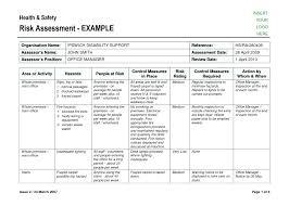 Risk Assessment Form Sample Template Template Risk Assessment Form Sample Formal Unique Doc 6