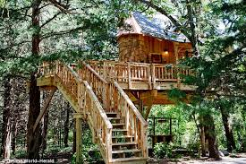 Worldu0027s Largest Treehouse At Crossville Tennessee Stands Over Treehouse Masters Free Episodes