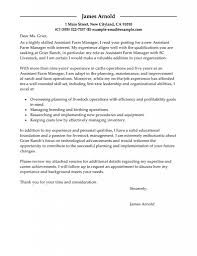 1000 Word Essay Typed Professional Admission Paper Editing For