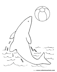 Interesting Dolphins Coloring Page Printable Dolphin Coloring Pages